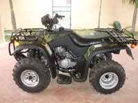 Atv for sale 250 cc brand new luggage racks back and front 